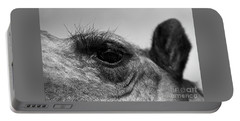 The Camels Eye  Portable Battery Charger