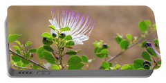 Portable Battery Charger featuring the photograph The  Caper Flower Blossoms. by Arik Baltinester