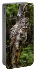 The Captivating Great Grey Owl Portable Battery Charger