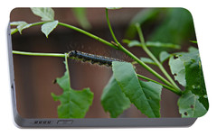Portable Battery Charger featuring the photograph The Caterpillar 2 by Cendrine Marrouat