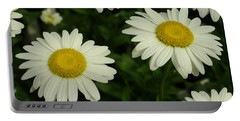 The Common Daisy Portable Battery Charger by James C Thomas