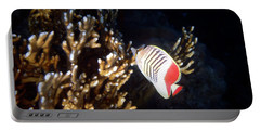 The Crown Butterflyfish 2 Portable Battery Charger