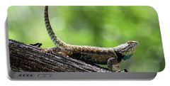 Portable Battery Charger featuring the photograph The Desert Spiny Stance  by Saija Lehtonen