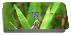 The Dragonfly Portable Battery Charger