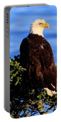 The Eagle Has Landed 2 Portable Battery Charger