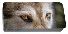 Portable Battery Charger featuring the photograph The Eyes Of A Great Grey Wolf by Teri Virbickis