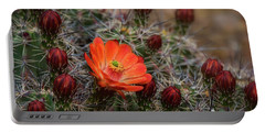 Portable Battery Charger featuring the photograph The First Bloom  by Saija Lehtonen