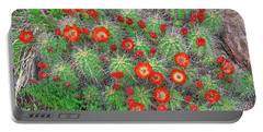 The First Week Of May, Claret Cup Cacti Begin To Bloom Throughout The Colorado Rockies.  Portable Battery Charger by Bijan Pirnia