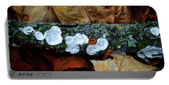 Portable Battery Charger featuring the photograph The Forest Floor - Cascade Wi by Mary Machare