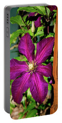 The Garden Wall Portable Battery Charger