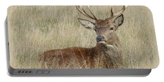 Portable Battery Charger featuring the photograph The Gentle Stag by LemonArt Photography