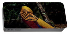 The Golden Pheasant Or Chinese Pheasant -atlanta Ga, Zoo Portable Battery Charger