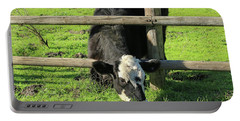 Portable Battery Charger featuring the photograph The Grass Is Always Greener by Art Block Collections