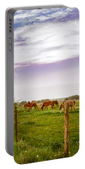 Portable Battery Charger featuring the photograph The Grass Was Greener by Melinda Ledsome