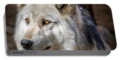 Portable Battery Charger featuring the photograph The Gray Wolf by Teri Virbickis