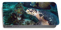 The Green Turtle And The Angelfish Portable Battery Charger