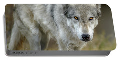The Grey Wolf Shake Portable Battery Charger