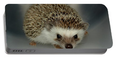 The Hedgehog Portable Battery Charger