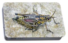 The Hopper Grasshopper Art Portable Battery Charger by Reid Callaway