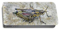 The Hopper Grasshopper Art Portable Battery Charger
