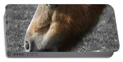 The Hungry Horse Portable Battery Charger