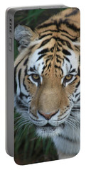 Portable Battery Charger featuring the photograph The Hunter by Laddie Halupa