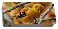 The Inquisitive Goldfinch Portable Battery Charger