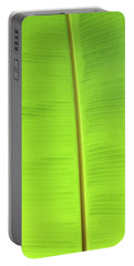 The Jungle Illuminated Portable Battery Charger