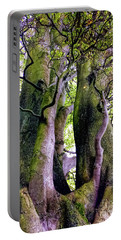 The Kings Tree Portable Battery Charger