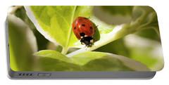 The Ladybug  Portable Battery Charger