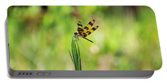 Portable Battery Charger featuring the photograph The Liberation by Michiale Schneider