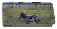 The Lonely Zebra Portable Battery Charger
