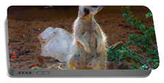 The Lookout - Meerkat Portable Battery Charger