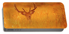 The Lord Of The Flies - Male Fallow Deer Shaking Of Mosquitoes At Sunset Portable Battery Charger