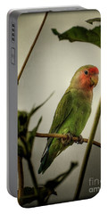 The Lovebird  Portable Battery Charger