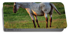 The Mare Portable Battery Charger