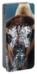 The Masked Bison Portable Battery Charger