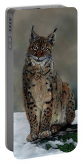 The Missing Lynx Portable Battery Charger