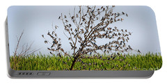 Portable Battery Charger featuring the photograph The More The Merrier- Tree Swallows  by Ricky L Jones