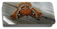 The Moth Portable Battery Charger by Nick Kirby