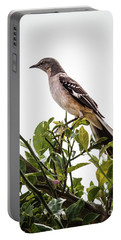 The Northern Mockingbird Portable Battery Charger