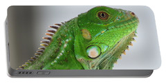 The Omnivorous Lizard Portable Battery Charger