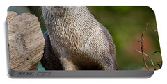 The Otter Stareth Portable Battery Charger
