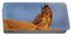 Portable Battery Charger featuring the photograph The Owl's Horns In The Breeze by Natalie Ortiz