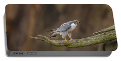 The Peregrine Falcon Portable Battery Charger