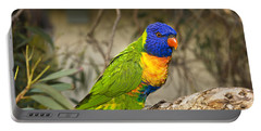 The Rainbow Lorikeet Portable Battery Charger