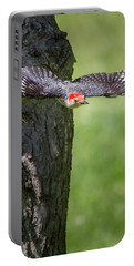 The Red Bellied Woodpecker Portable Battery Charger by Bill Wakeley