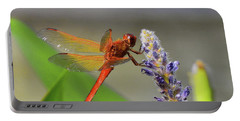 The Red Dragonfly Nbr.2 Portable Battery Charger by Scott Cameron