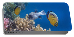 The Red Sea Underwater World Portable Battery Charger