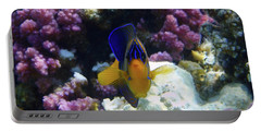 The Royal Angelfish Portable Battery Charger